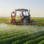 Os perigos dos agrotóxicos à saúde humana, aos animais e ao ecossistema