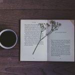 Entrelinhas é a nova coluna do Avoador sobre o universo literário
