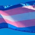 25 pessoas trans foram eleitas nas eleições municipais de 2020