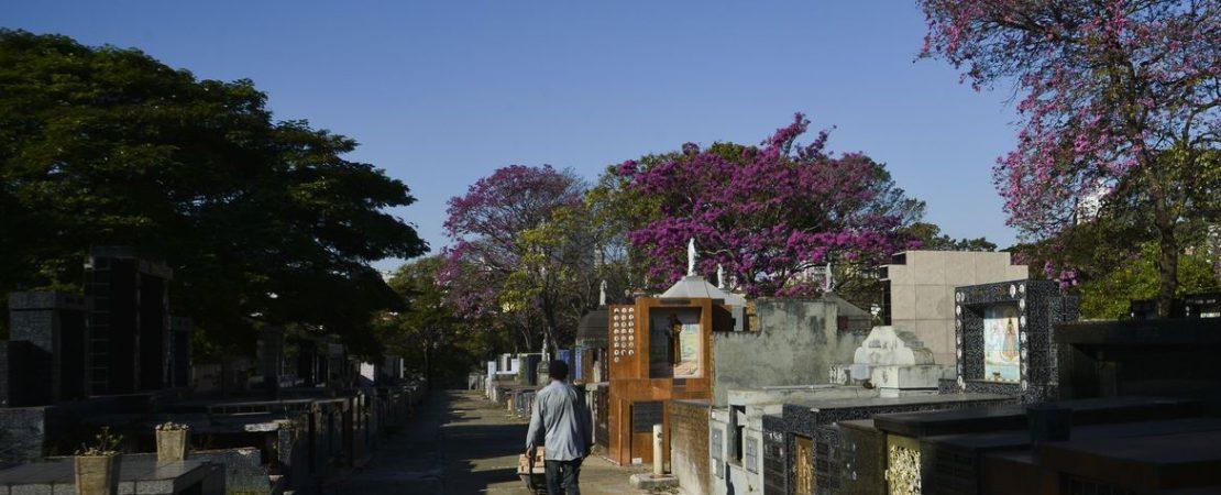Cemitério Foto: Rovena Rosa/Agência Brasil